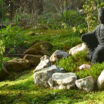 Moss Garden Sanctuary