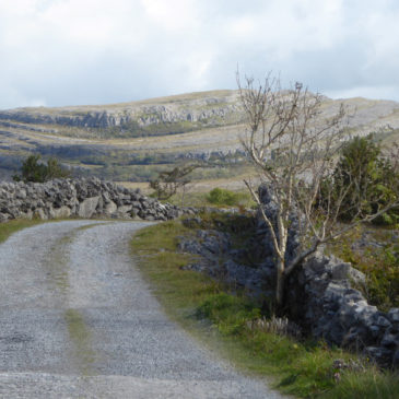 Community, Art, and Landscape: Ireland Reflections