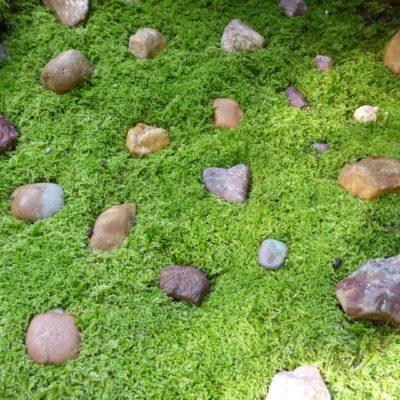 Puzzle Stones