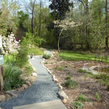 Earth Day: Temenos Garden Sanctuary