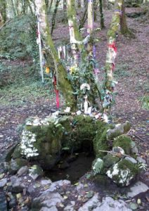Tobar na Sul holy well with its sacred tree festooned with colorful prayer cloths at Lough Hyne in Ireland.