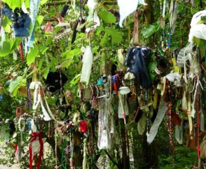 "Prayer rags or ""clooties"" hanging from sacred tree at holy well in Ireland."