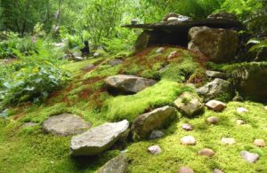Moss Garden with rock shrine to Mother Earth