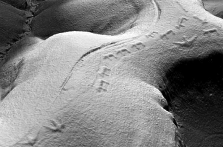 A LiDar Image of bears marching and birds flying across a ridge at Effigy Mounds National Monument..