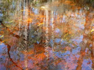"""Water reflections in """"Turning a Trip Into a Pilgrimage"""""""