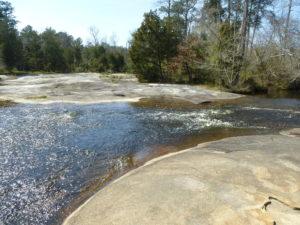 Cedar Prong Creek at Mitchell Mill SNA in Sacred Ground: A Whale of a Tale