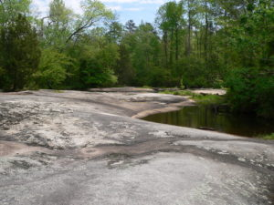 Granite flatrock, water, trees at Mitchell Mill SNA in Sacred Ground: A Whale of a Tale